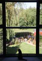Interior view of a Juliet Balcony looking out at garden with a black cat