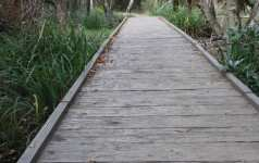 Recycled plastic decking for wetland areas