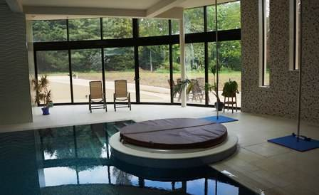 Luxury Curved Doors in pool room