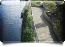 Slip-free Composite Decking for boardwalks and wetland areas